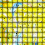 Photo: http://www.123rf.com/photo_15788478_abstract-art--tiles-of-playfulness-synergy-of-light-colors-impressionism-and-tiles.html